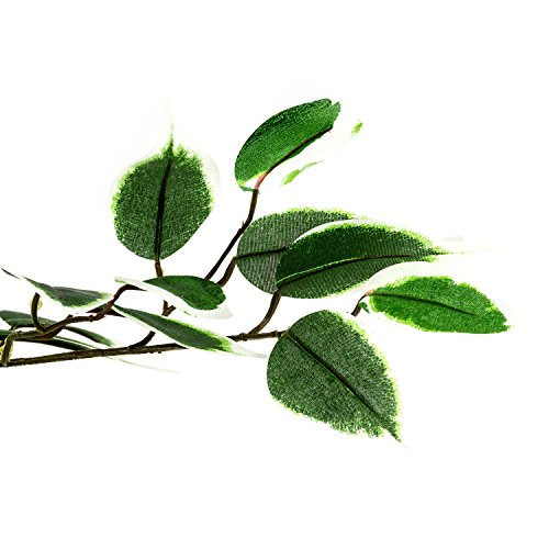 Großer grüner Ficus Baum, Echtholzstamm, Kunstbaum, Kunstpflanze, Dekobaum - Variante: 160 oder 190 cm - 4