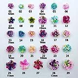 Best GENERIC Jewelry Supplies - Generic 21 : Resin Rose 3D Nail Art Review