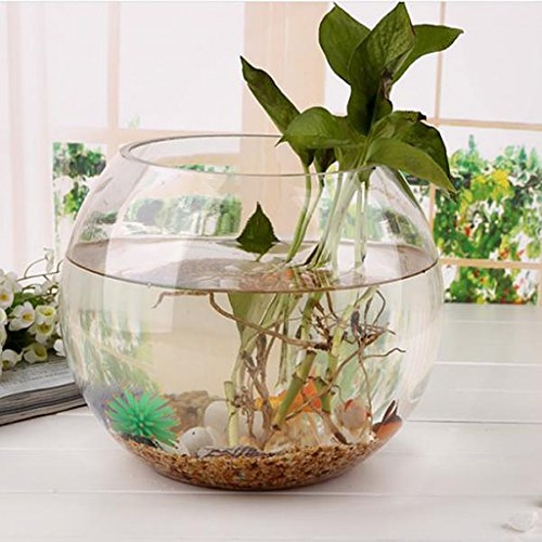 Sharplace Transparenten Kristallglasschale Klar Kugel Vase Blumenvase Fisch Tank