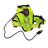 Harnais Pour Chien, Collier Animaux De Compagnie Gilet,LED / USB chargeant la courroie de poitrine réfléchissante rougeoyante chien moyen grande taille, traînée extérieure et confortable ,Green-M