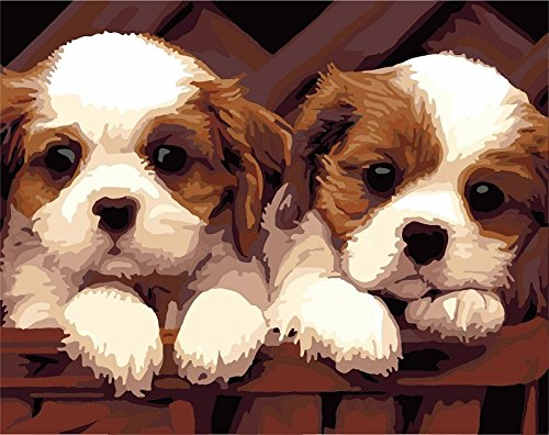 Paint by Numbers Kits, Tiere Gemälde für Erwachsene Kinder Senioren Junior, DIY Ölgemälde auf Leinwand mit Holz-Frame (Dog) (Kit Kinder-paint)