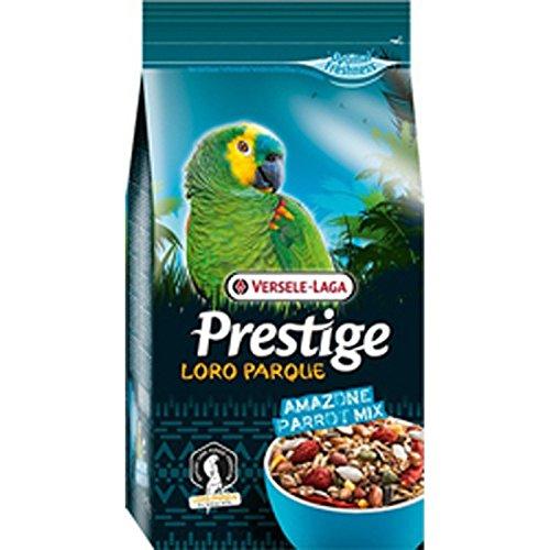 Prestige perroquet Park Amazone Parrot