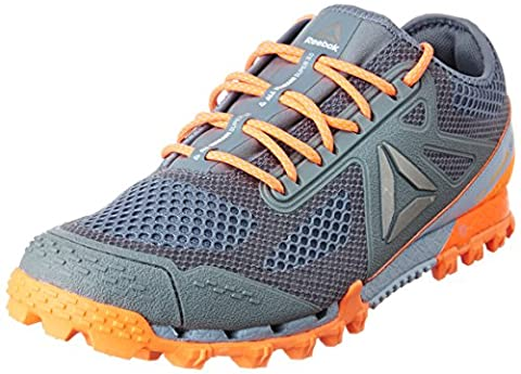 Reebok Bd2168, Chaussures Trail Running Homme, Gris (Asteroid Dust / Gable Grey / Wild Orange / Pew), 43 EU