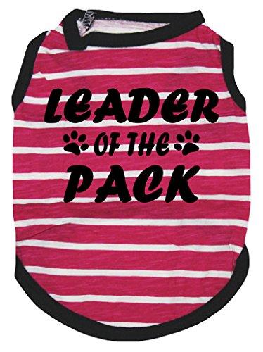 petitebelle Puppy Kleidung Hund Kleid Leader der Pack HOT PINK Streifen T-Shirt