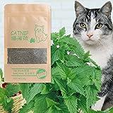Autone 10 g natural Catnip Premium orgánico gato gatito mentol sabor divertido juguetes dulces