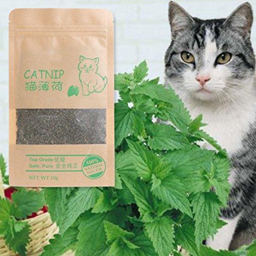 Katzenminze Cattle Gras 10g Menthol Geschmack Lustige Katze Spielzeug ()