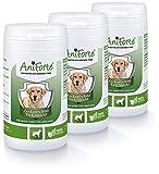 AniForte Anti Garrapatas para Perros Grandes de 35 a 50 kg. 3 botes de 60 cápsulas. Producto 100% Natural con Vitamina B para Anti Garrapatas.