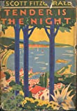 Tender is the Night (English Edition)