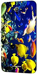 Timpax protective Armor Hard Bumper Back Case Cover. Multicolor printed on 3 Dimensional case with latest & finest graphic design art. Compatible with Sony Xperia E4 Design No : TDZ-24511
