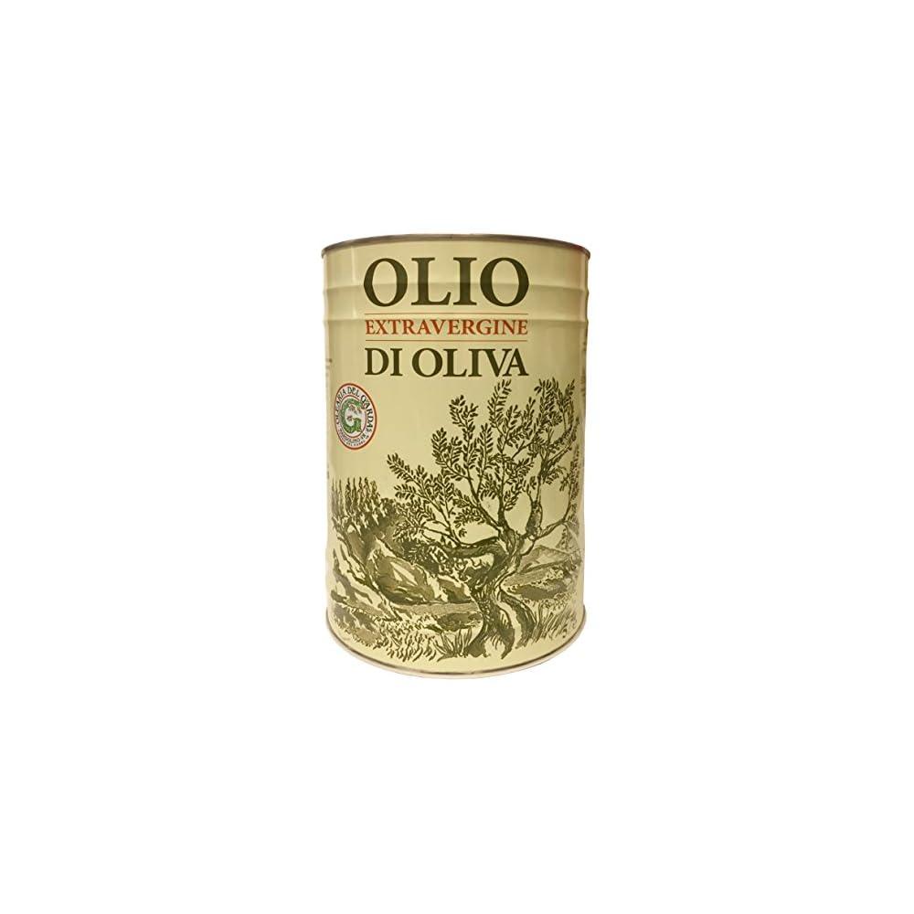 Natives Olivenl Extra Del Garda Kaltgepresst 5 L Kanister Olio Extra Vergine Di Oliva