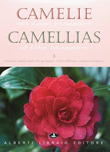 Camelie del Lago Maggiore. Estratto da «Antiche camelie». Ediz. italiana e inglese: 3 (Verbano illustrato) por Gianbattista Bertolazzi