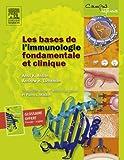Image de Les bases de l'immunologie fondamentale et clinique