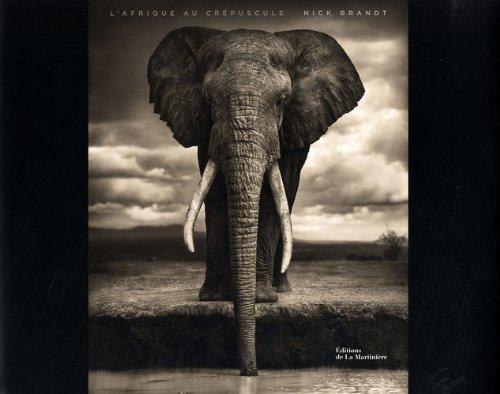 L'Afrique au crépuscule