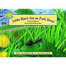 Little Black Ant on Park Street (Smithsonian's Backyard)