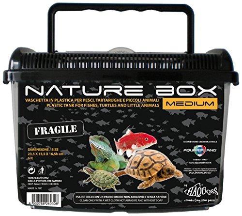 Haquoss Transportbox aus Kunststoff nature box Medium für Reptilien, Amphibien, Fische und kleine Tiere