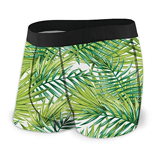 Generic Men's Underwear Sports Boxer Briefs, Watercolor Tropical Palm Leaves Colorful Illustration Natural Feelings,L -