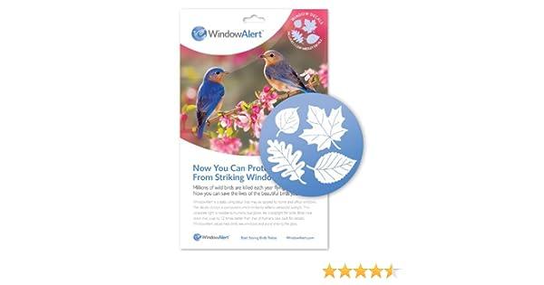 Window Alert Leaf Medley Decal Pack Amazoncouk Garden - Window alert hummingbird decals amazon