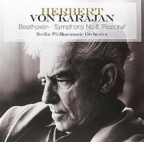 Beethoven Symphony No 6 In F Major Op 68 - Pastoral [VINYL]