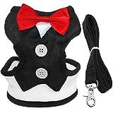 Berry Samt Tuxedo Gentleman Suit Hundegeschirr Weste mit Griff für kleine mittelgroße Hunde, Mops, Jack Russell, Terrier, Pudel, Welpen