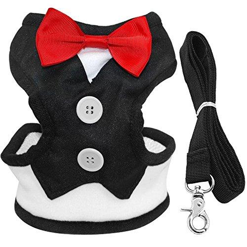 (Berry Samt Tuxedo Gentleman Suit Hundegeschirr Weste mit Griff für kleine mittelgroße Hunde, Mops, Jack Russell, Terrier, Pudel, Welpen)