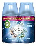 Air Wick Freshmatic Max Automatisches Duftspray Nachfüller DUO, Tag am Meer, 2 x 250ml