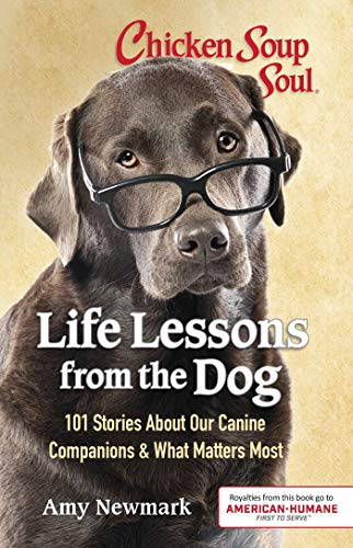 Chicken Soup for the Soul: Life Lessons from the Dog (English Edition)