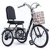 Riscko Triciclo Adulto con Dos cestas Tres Ruedas Modelo Park (Negro)