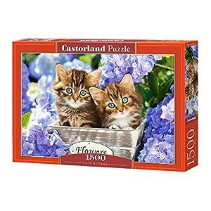 CASTORLAND Cute Kittens 1500 pcs Puzzle - Rompecabezas (Puzzle Rompecabezas, Fauna, Niños y Adultos, Gato, Niño/niña, 9 año(s))