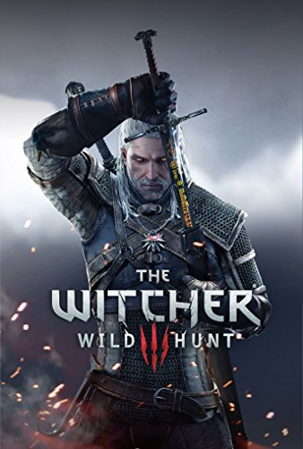 Infinite Arts The Witcher 3 Wild Hunt (24inch x 36inch/60cm x 89cm) Silk Print Poster - Silk Printing - 8B8A60