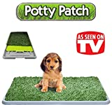 Die original Potty Patch – Katzenstreu