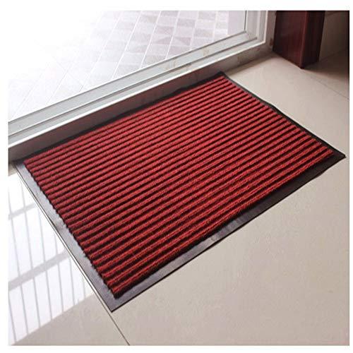 AITU Carpet Alfombra Antideslizante Moquetas De Entrada