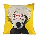 Taottao simpatico cane gatto animale divano letto Home decorazione festival federa cuscino C