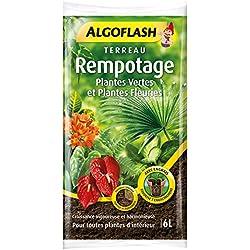 ALGOFLASH Terreau Rempotage, Croissance vigoureuse, plantes vertes et fleuries d'intérieur, 6 L, ATREM6