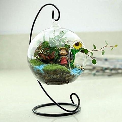 Pggpo Vaso di vetro trasparente rotondo Hanging