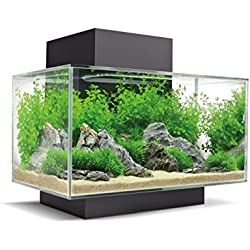 Fluval 15034 Edge 2.0 23l Aquarium Set, Noir