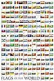 1art1 48817 Flaggen - Flaggen Der Welt 2010 Poster (91 x 61