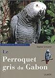 le perroquet gris du gabon
