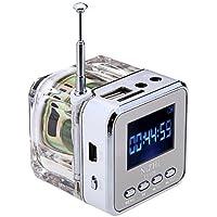 NIZHI Mini Digital Music portatile di MP3 / 4 Player Micro SD / TF USB Speaker Disk Radio FM(argento)