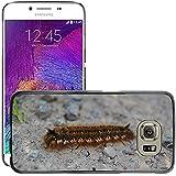Just carcasa caliente estilo teléfono celular PC Funda rígida//m00138715Cerca de Caterpillar piedra Hairy insectos//Samsung Galaxy S6(no para S6edge)