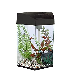 Fish 'R' Fun Hexagonal Tank, 21.6 Litre Capacity, Black
