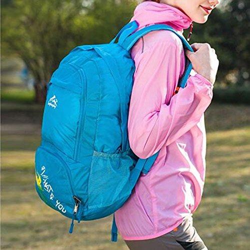 AllureFeng Sommersportarten Faltung ultraleichten wasserdichten Rucksack Rucksäcke 20 L blaue Tasche Purple