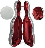 Steinbach 4/4 ABS boîtier violoncelle avec roues et système de sac ? dos en argent