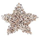 nbeads 500g/470pcs Spirale Seashell Sea Shell Perlen Kaurimuschel Craft für Halskette, Collier, Armbänder, Ohrringe, Ring, Haar und afrikanischen inspirierte Mode Schmuck
