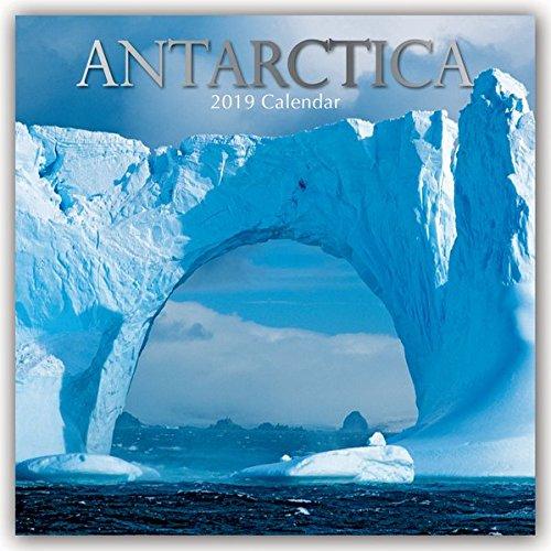 Antarctica - Antarktis 2019 - 16-Monatskalender: Original The Gifted Stationery Co. Ltd [Mehrsprachig] [Kalender] (Wall-Kalender)
