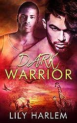 Dark Warrior: Gay Romance