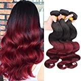 Dai Weier Lot De Tissage Bresilien Ombre 1B 99J Red Wine Body Wave Cheveux Humains Human Hair Extensions 100 Natural 12 14 16 pouceses