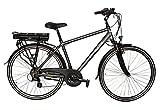 ZÜNDAPP E-Bike Trekking Green 4.5, 28 Zoll, 7 Gang, Heckmotor, 360 Wh 71,12 cm (28 Zoll)