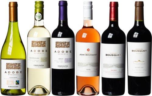Weinpaket Argentinische Spitzenweine Bio (6 x 0.75 l)