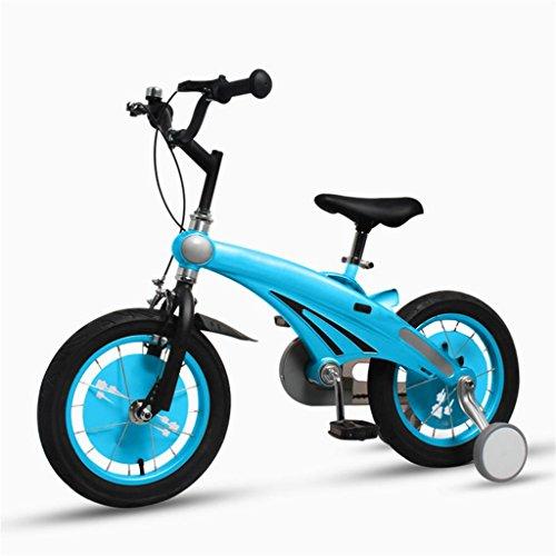 Les vélos d'enfants 12 Pouces bébé Mountain Bike Cadeau créatif Mode Mignon garçon Fille réglable (Taille : 12 inches)