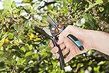GARDENA Gartenschere B/S XL: Pflanzenschonende Baumschere mit Bypass-Schneide für Äste und Zweige, max. Schneid-Durchmesser 24 mm, stufenlose Grifföffnung (8905-20) - 4
